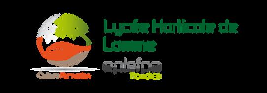 image logo_Lycee_Lomme.png (46.2kB)